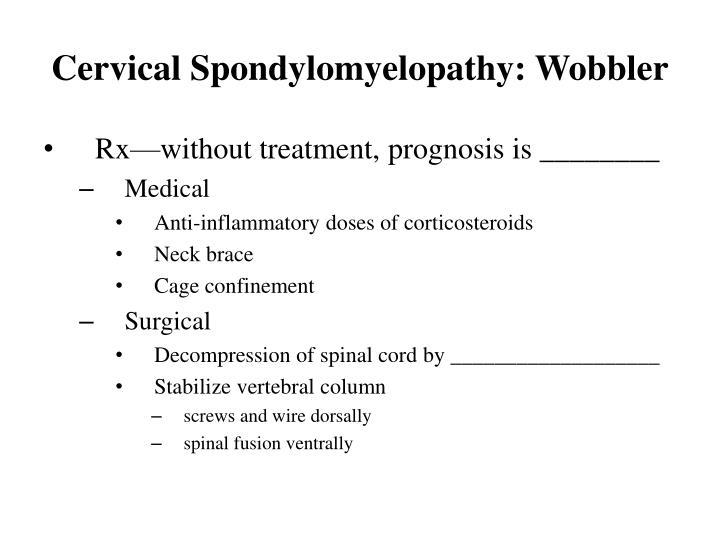 Cervical Spondylomyelopathy: