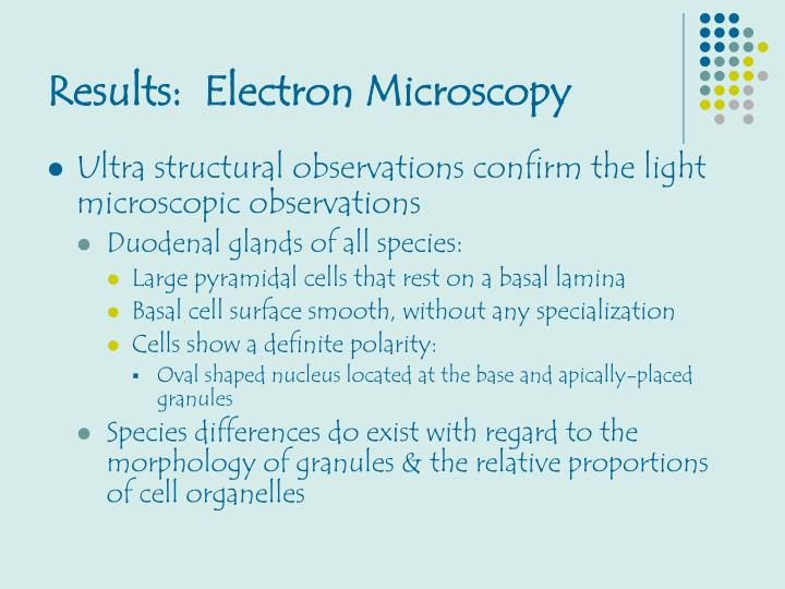 Results:  Electron Microscopy