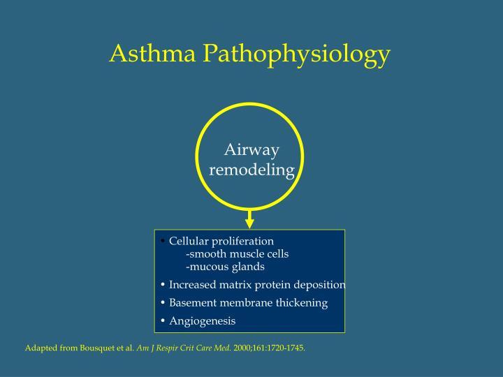 Asthma Pathophysiology