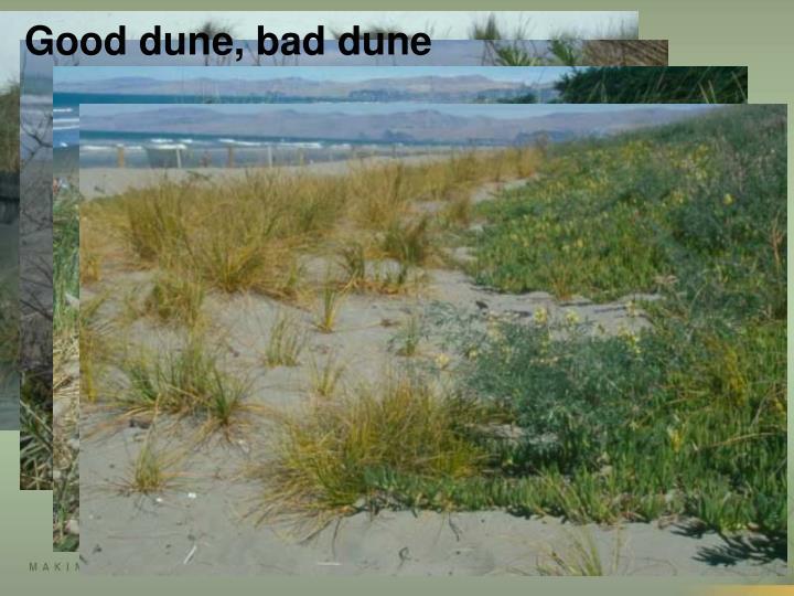 Good dune, bad dune