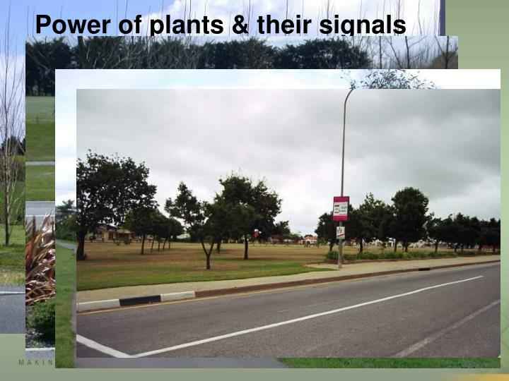 Power of plants & their signals