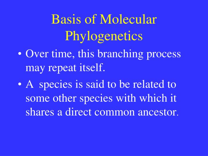 Basis of Molecular Phylogenetics
