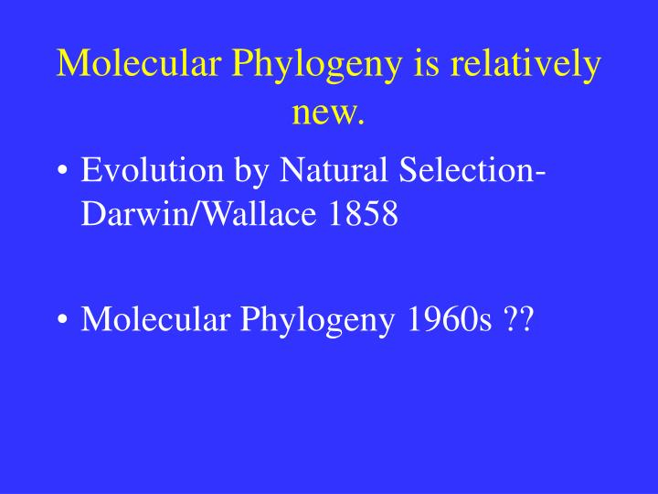 Molecular Phylogeny is relatively new.