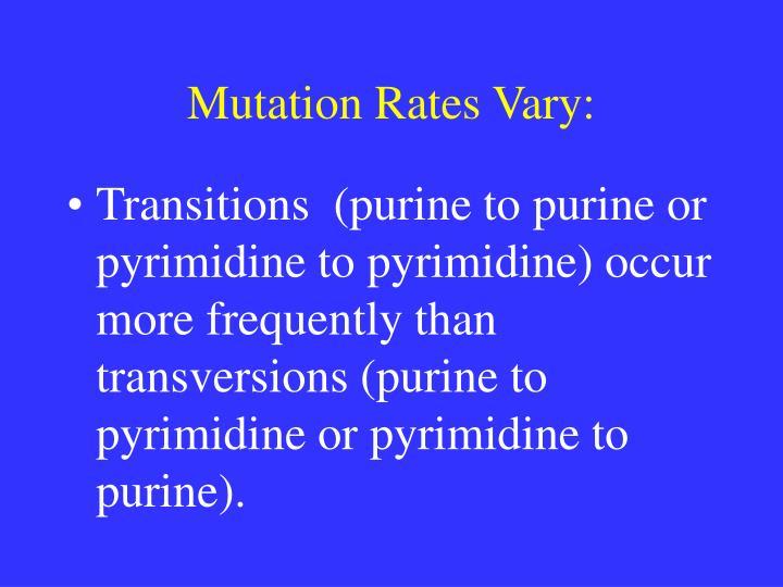 Mutation Rates Vary: