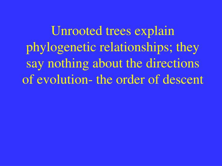 Unrooted trees explain phylogenetic relationships; they say nothing about the directions of evolution- the order of descent