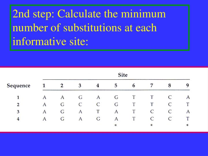 2nd step: Calculate the minimum number of substitutions at each informative site:
