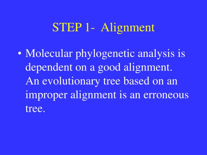 STEP 1-  Alignment