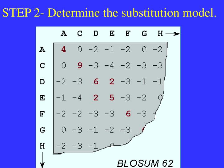 STEP 2- Determine the substitution model.