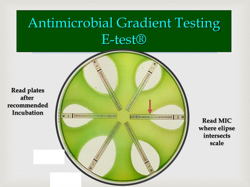 Antimicrobial Gradient Testing