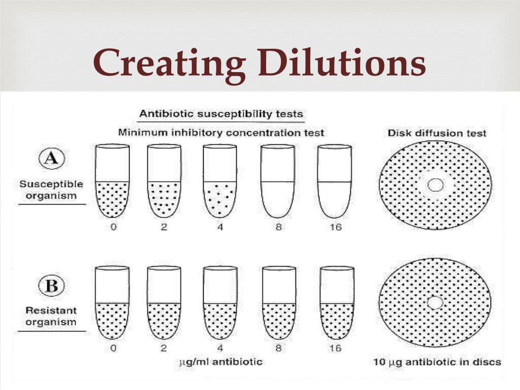 Creating Dilutions