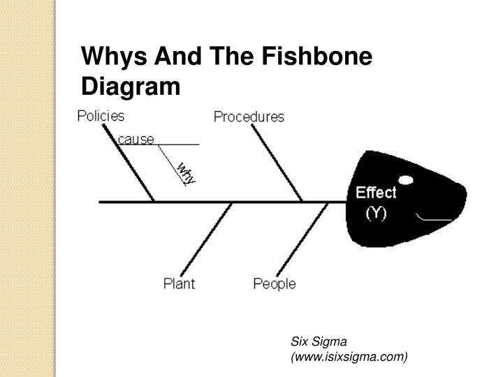 Whys And The Fishbone Diagram