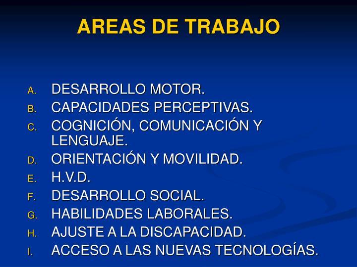 AREAS DE TRABAJO