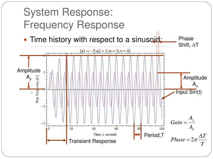 System Response: