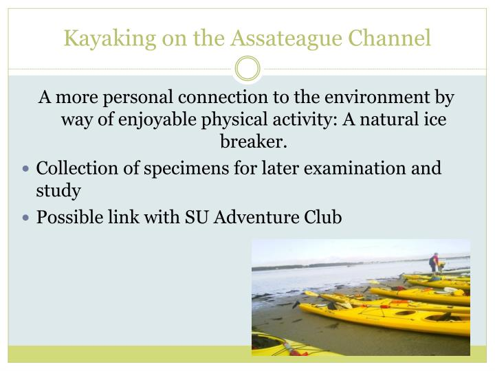 Kayaking on the Assateague Channel