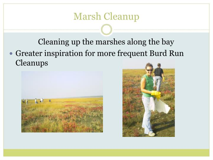 Marsh Cleanup