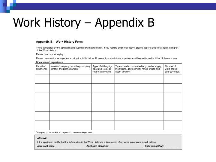 Work History – Appendix B