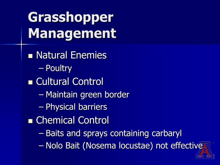 Grasshopper Management