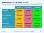 tres culturas organizacionales posible