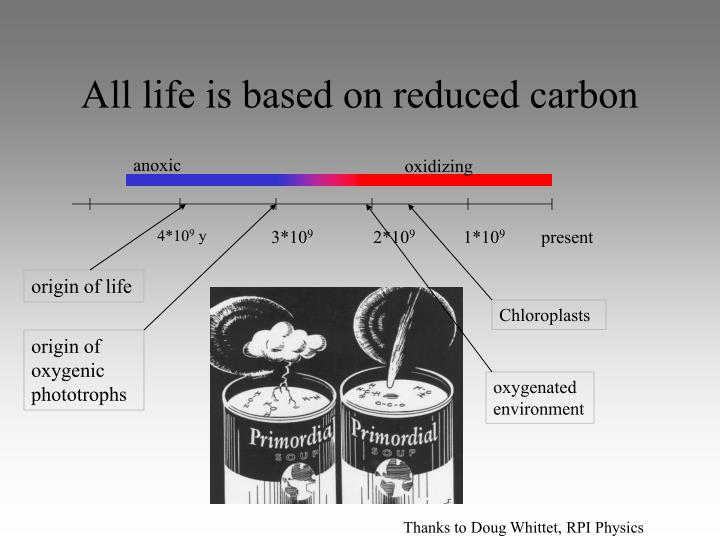 All life is based on reduced carbon