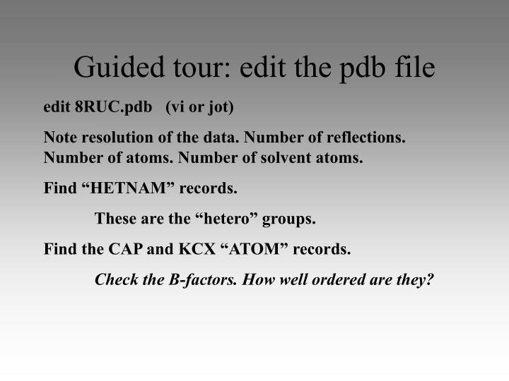 Guided tour: edit the pdb file