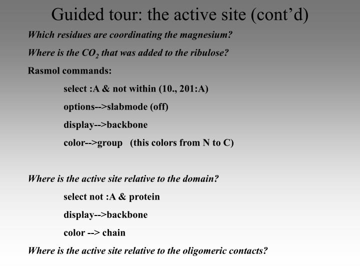 Guided tour: the active site (cont'd)