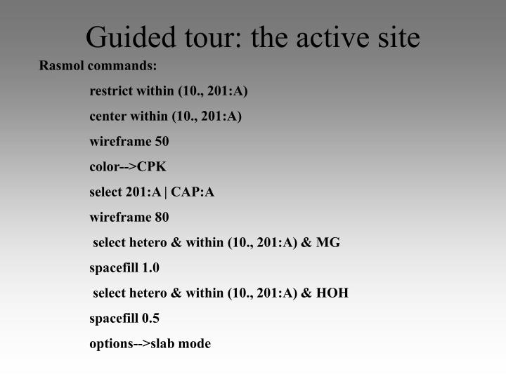 Guided tour: the active site