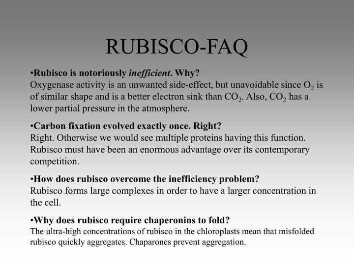 RUBISCO-FAQ
