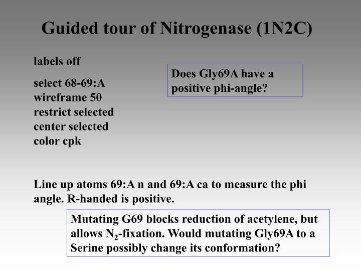 Guided tour of Nitrogenase (1N2C)