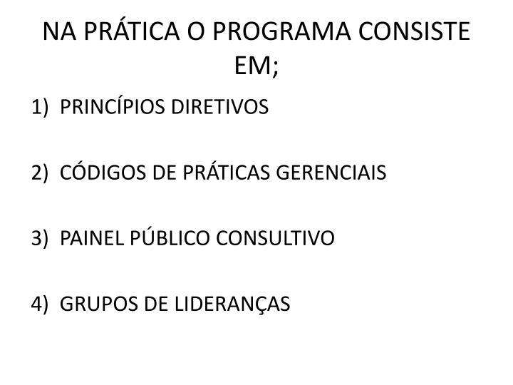NA PRTICA O PROGRAMA CONSISTE EM;