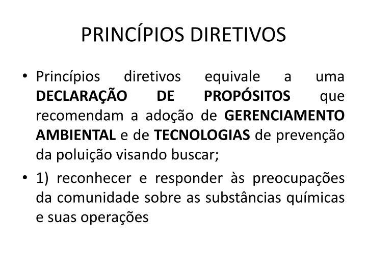 PRINCPIOS DIRETIVOS