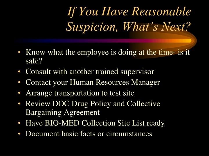 PPT - Reasonable Suspicion Education PowerPoint ...