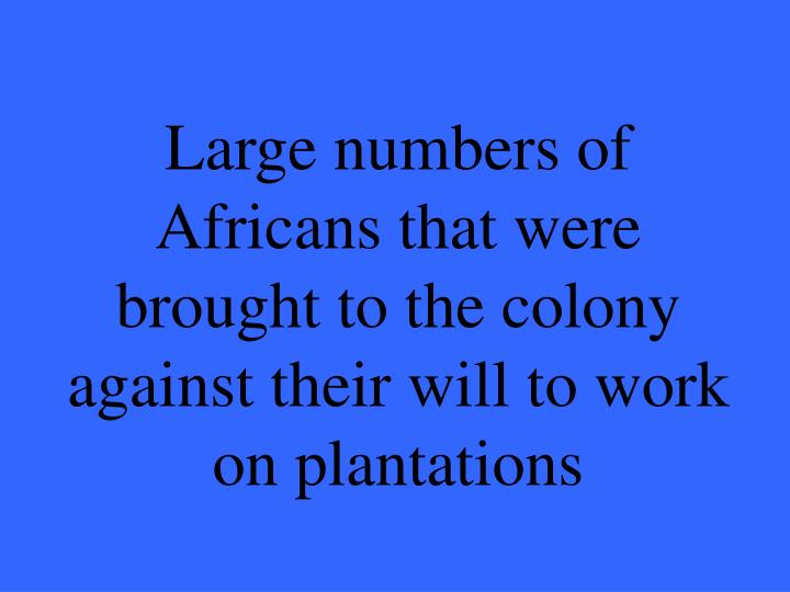 Large numbers of Africans that were brought to the colony against their will to work on plantations