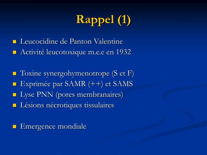 Rappel (1)