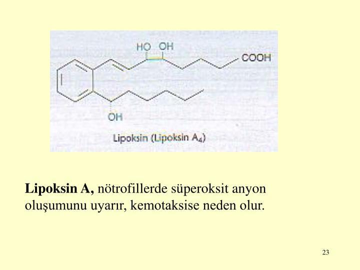 Lipoksin A,