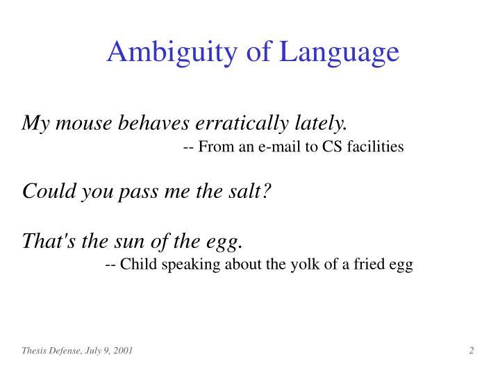 Ambiguity of Language