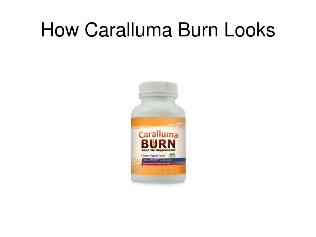 How Caralluma Burn Looks
