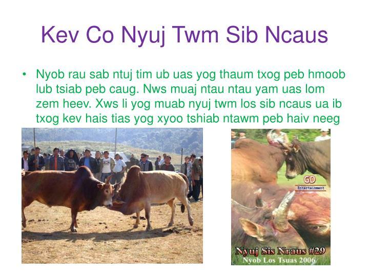 Kev Co Nyuj Twm Sib Ncaus