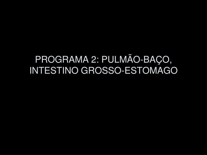 PROGRAMA 2: PULMÃO-BAÇO, INTESTINO GROSSO-ESTOMAGO