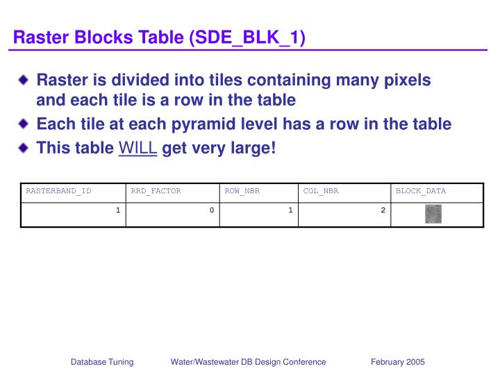 Raster Blocks Table (SDE_BLK_1)