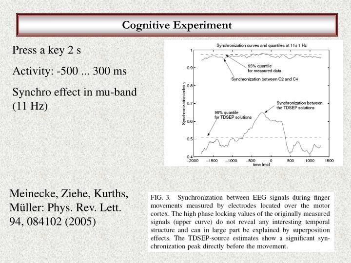 Cognitive Experiment