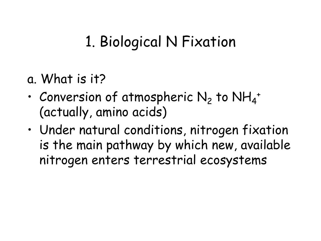 1. Biological N Fixation