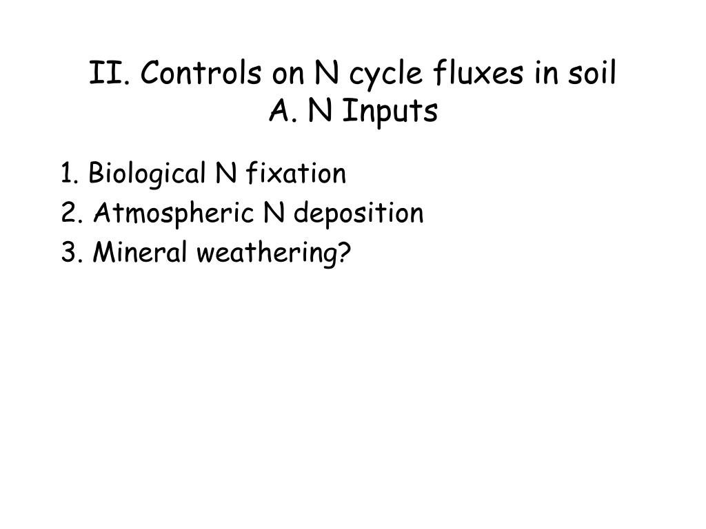 II. Controls on N cycle fluxes in soil