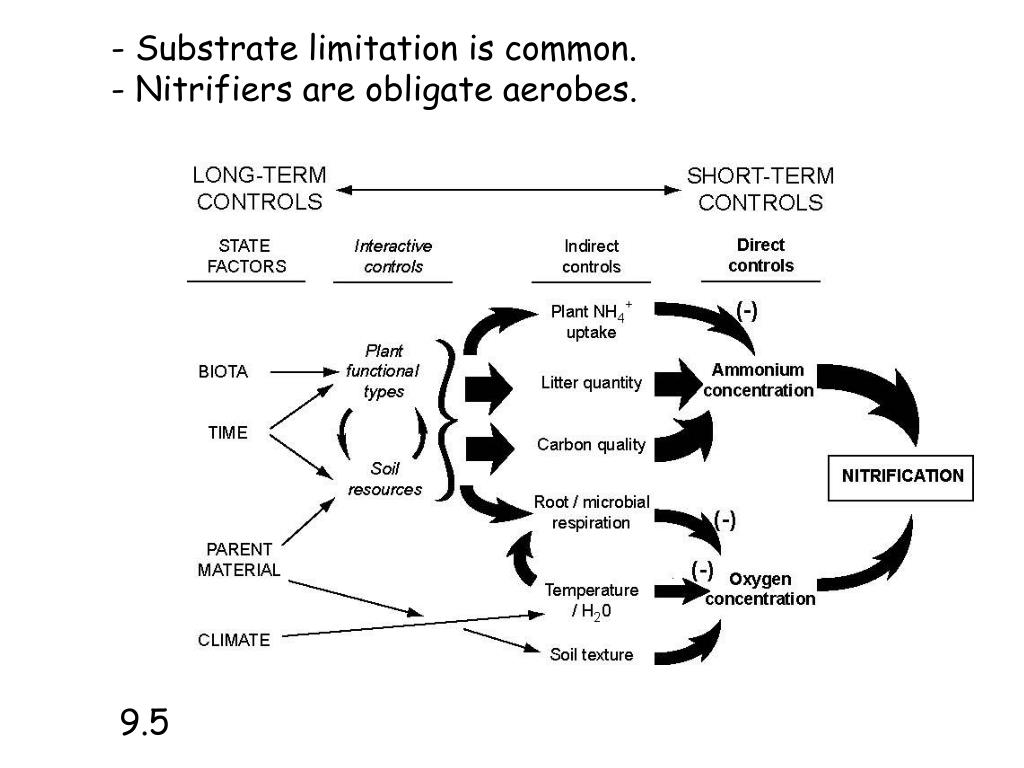 - Substrate limitation is common.