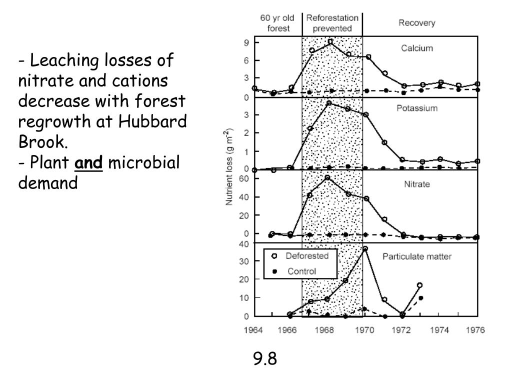 - Leaching losses of nitrate and cations decrease with forest regrowth at Hubbard Brook.