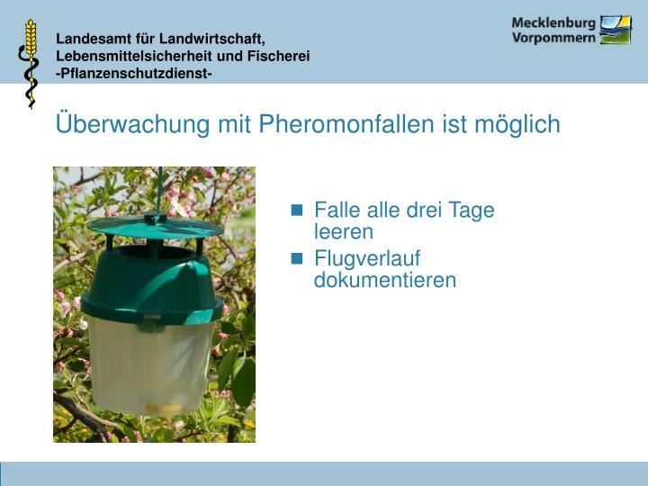 Überwachung mit Pheromonfallen ist möglich