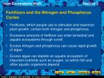 fertilizers and the nitrogen and phosphorus cycles