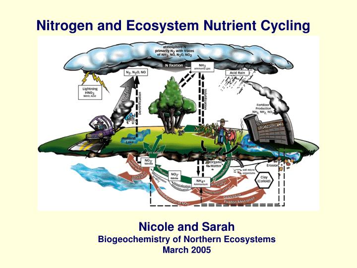 Nitrogen and Ecosystem Nutrient Cycling