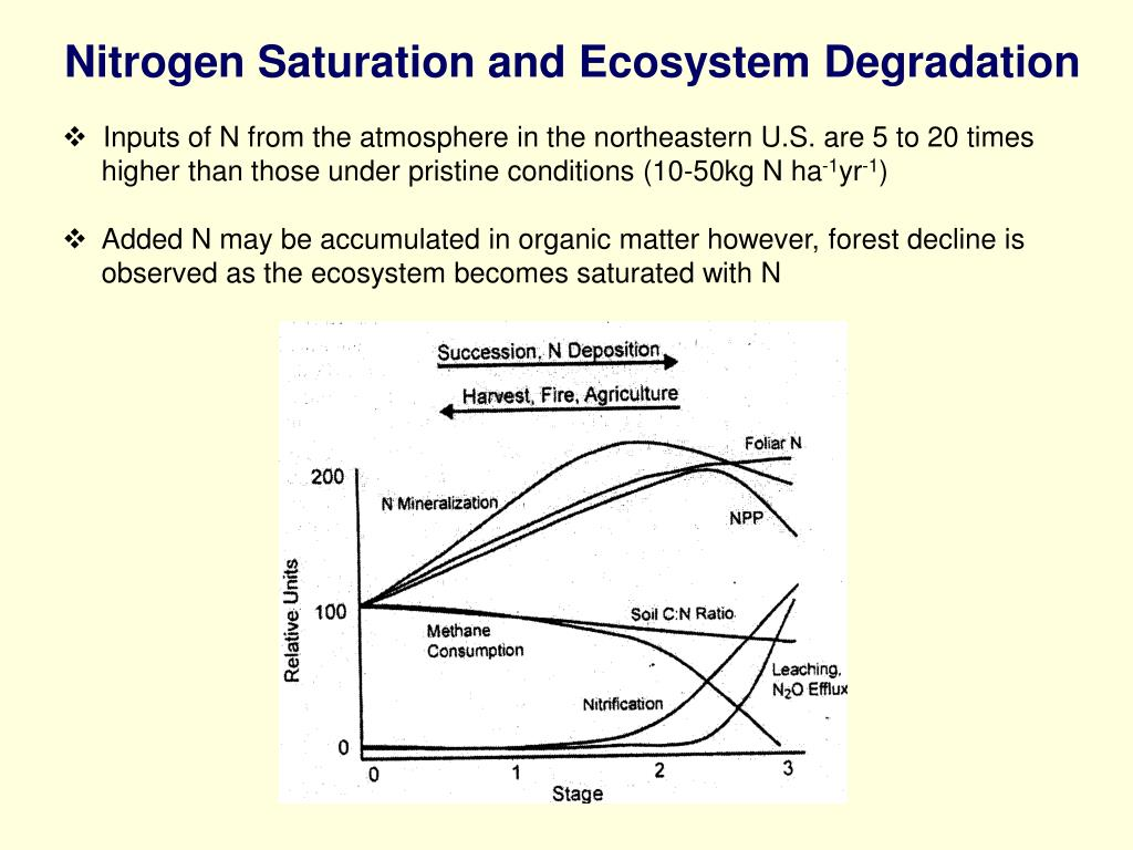 Nitrogen Saturation and Ecosystem Degradation