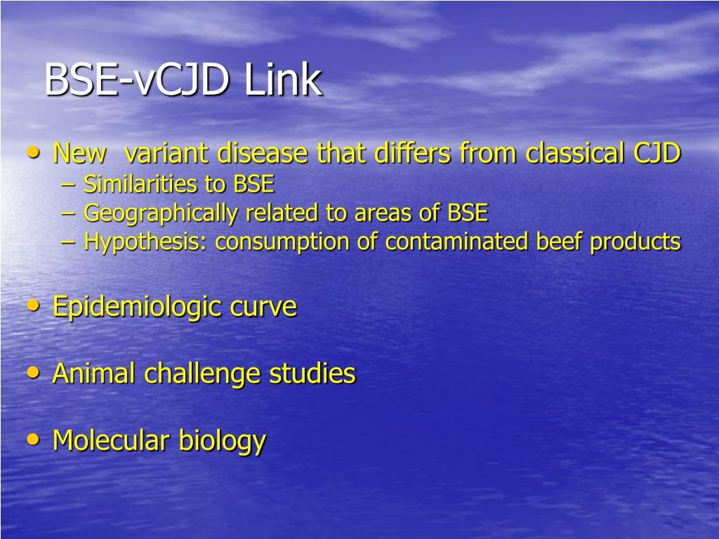 BSE-vCJD Link