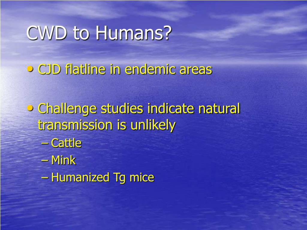 CWD to Humans?